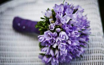 Offrir des fleurs à une personne : les codes cachés
