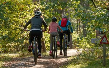 4 activités intéressantes à pratiquer en famille